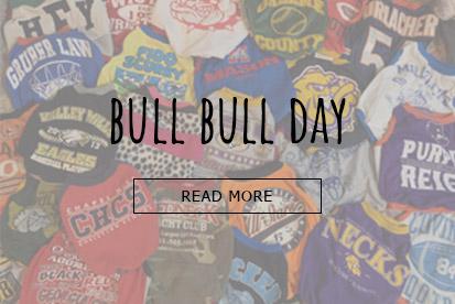 BULL BULL DAY